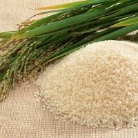 Рис, незаменимый продукт, который обладает огромным запасом полезных свойств